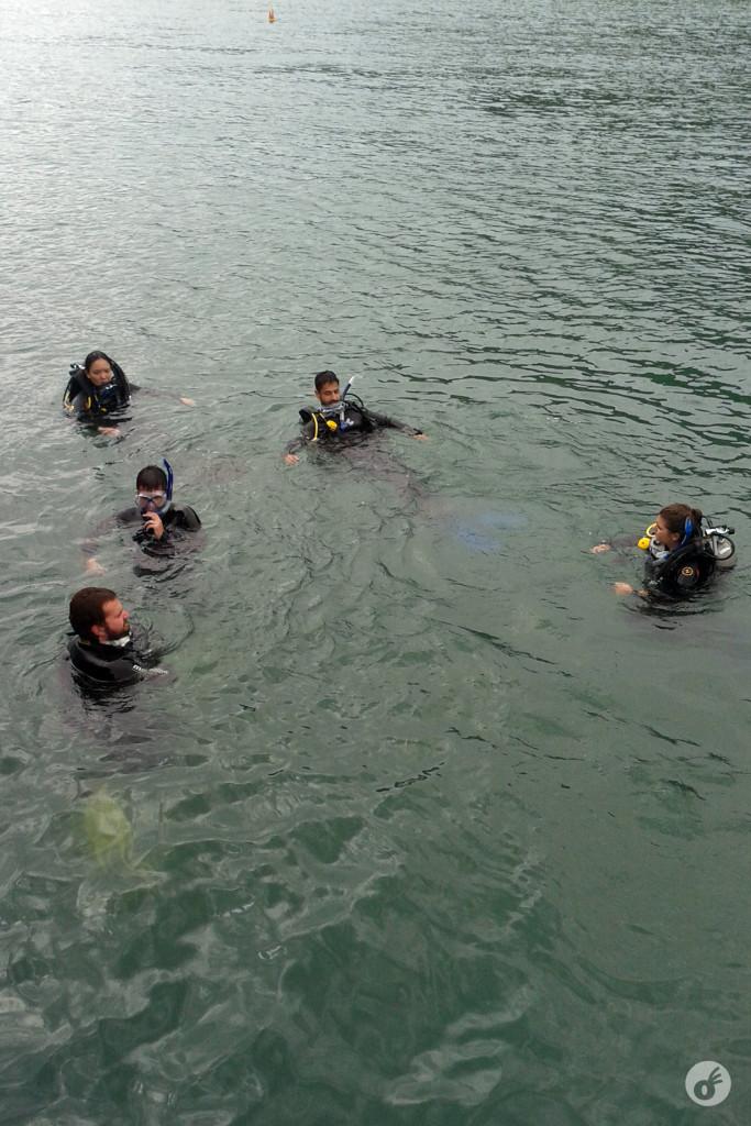 A galera na água, antes de ir lá pro fundo
