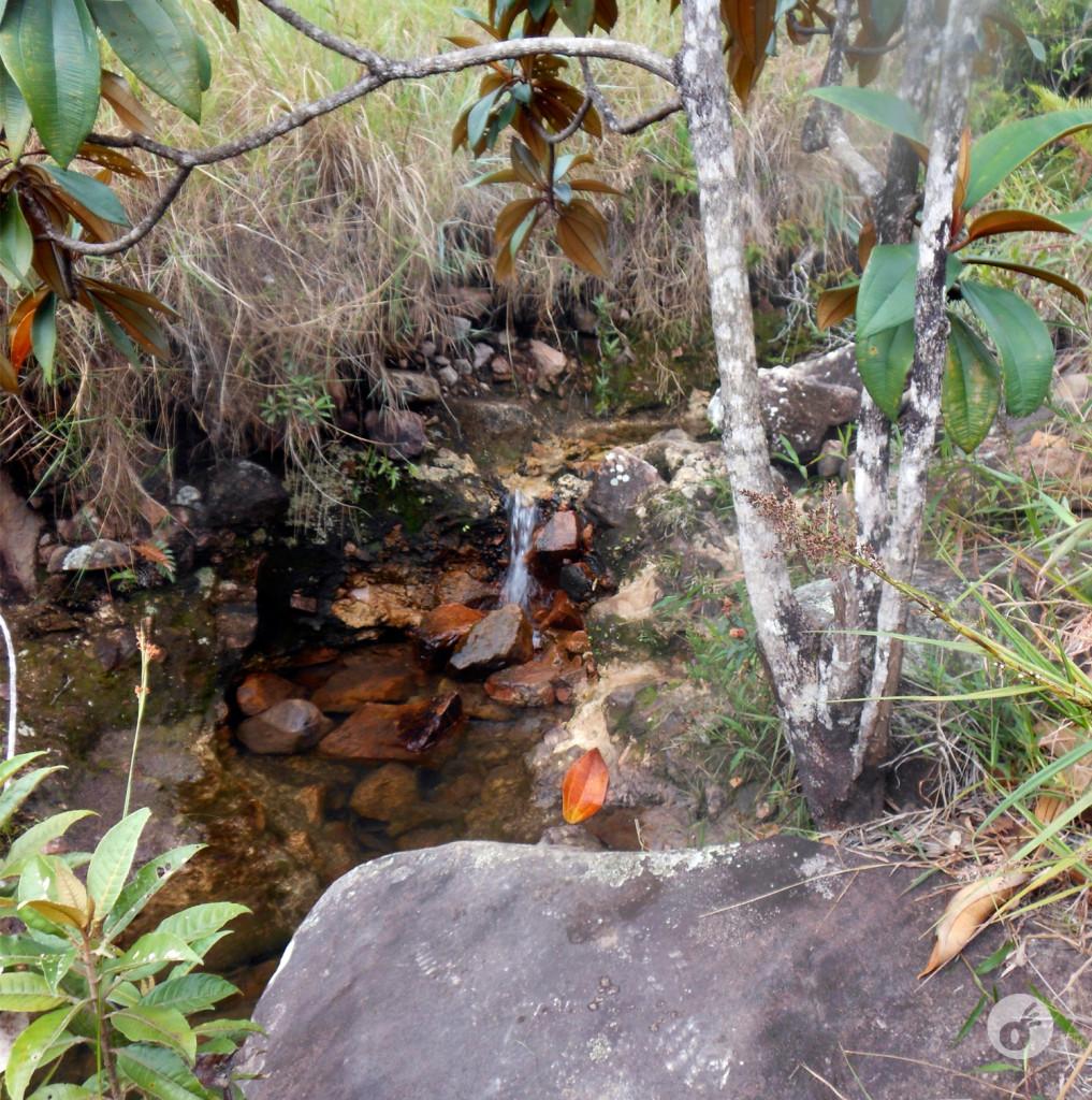 Pra aliviar o percurso, pequenas nascentes e água gelada.