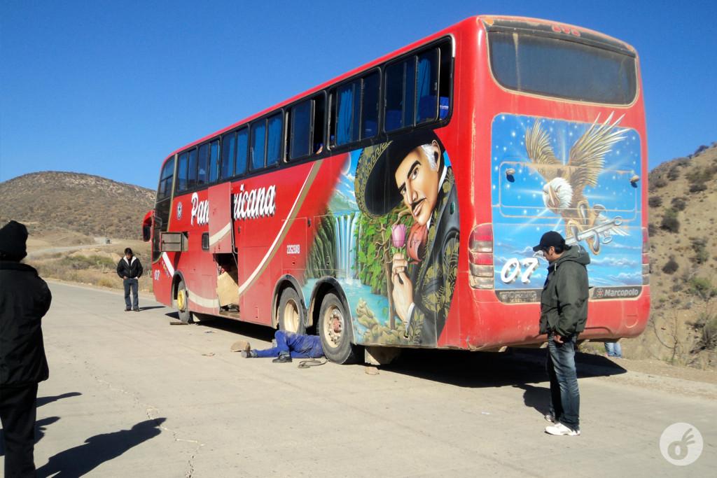 Como um ônibus com uma pintura dessas poderia dar certo?