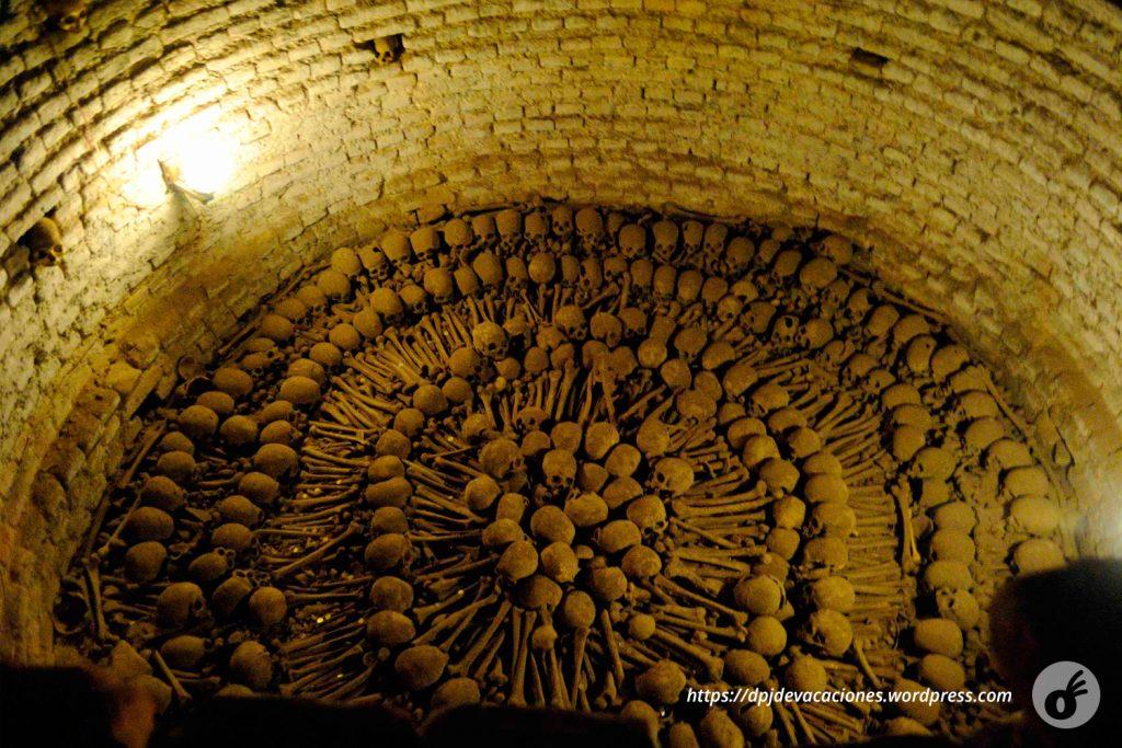"""Uma das """"exposições"""" de ossos. Na foto anterior, eles estão em caixas e valas pelo caminho."""