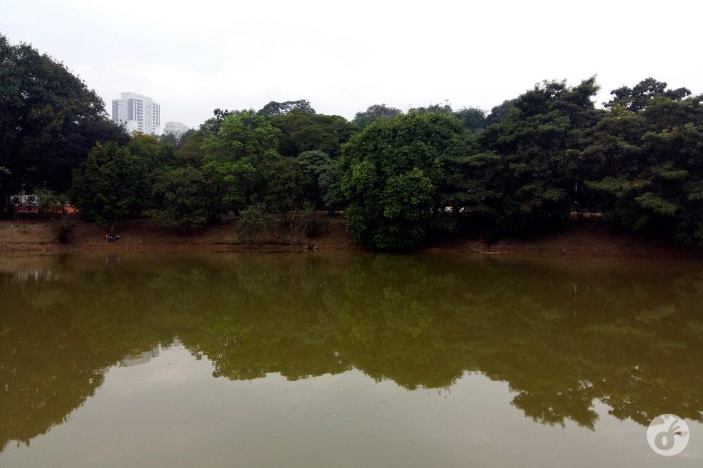 ...e uma lagoa que sequer sabíamos que existia.